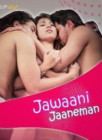 Jawaani Jaaneman (2020) Complete Web Series