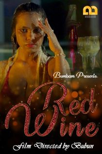 Red Wine (2020) Bumbam Hindi Web Series