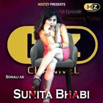 Sunita Bhabi (2020) Hindi Web Series